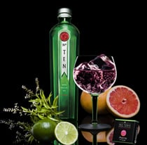 Tanqueray No. Ten Botanicals