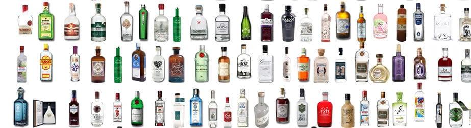 Gin & Tonic Kombinationen entdecken