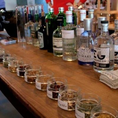 Botanicals beim Gin Tasting in Saarbrücken