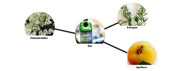 Food Pairing mit Gin: Beispiel