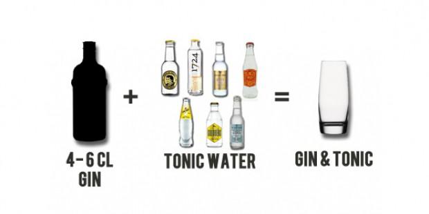 Welcher Gin passt zu welchem Tonic?