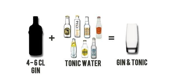 Welches Tonic zu welchem Gin?