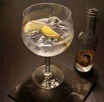 Trübung im Gin & Tonic