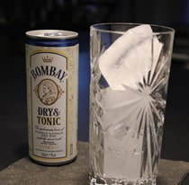 Bombay London Dry Gin aus der Dose