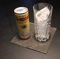 Gordon's Gin & Tonic aus der Dose