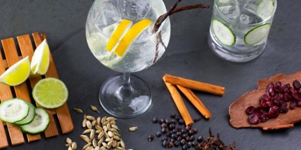 Gewürze für den Gin & Tonic