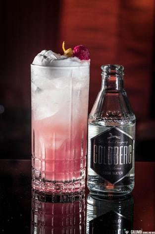 Raspberry Silver Gin Fizz