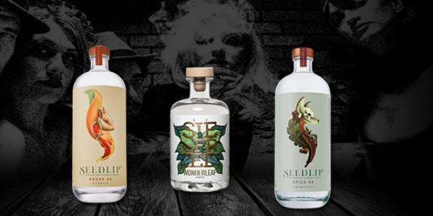 Alkoholfreie Gins im Vergleich