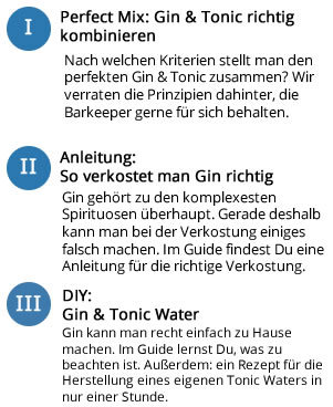 Inhalte im GinTonic Guide