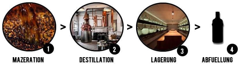 Prozess der Ginherstellung