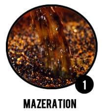 Mazeration der Botanicals im Neutralalkohol