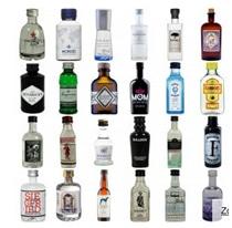 Gin-Kalender mit Miniaturen